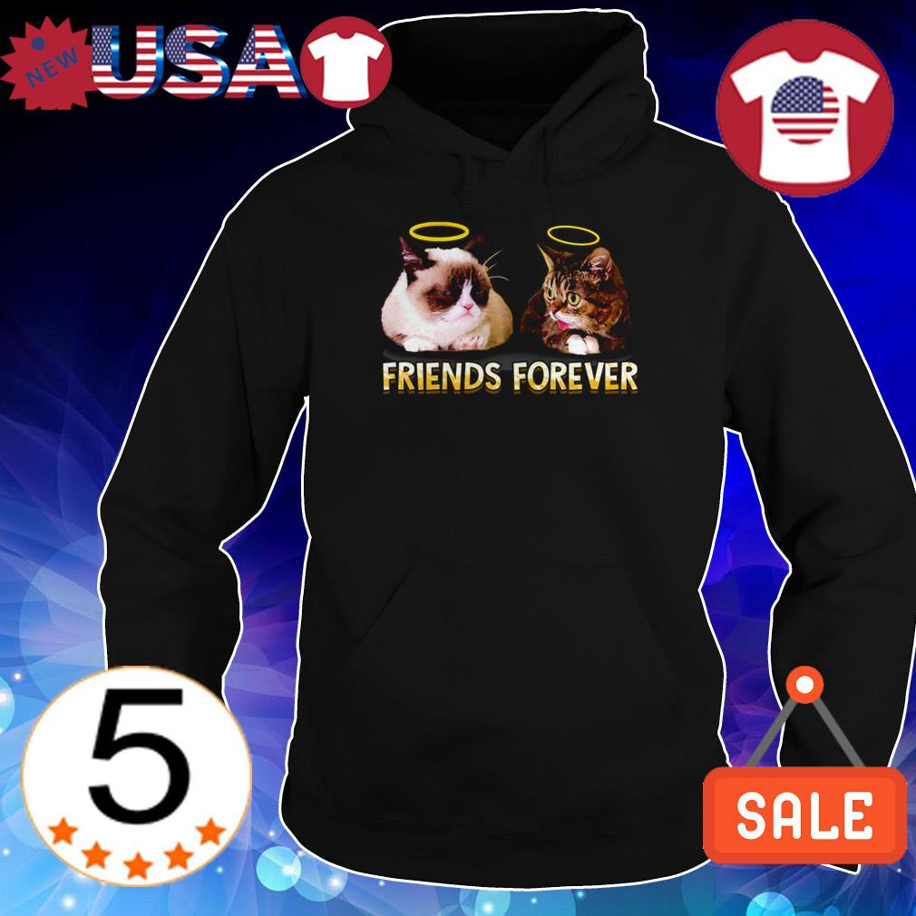 Official Grumpy Cat and Lil Bub Friends Forever shirt